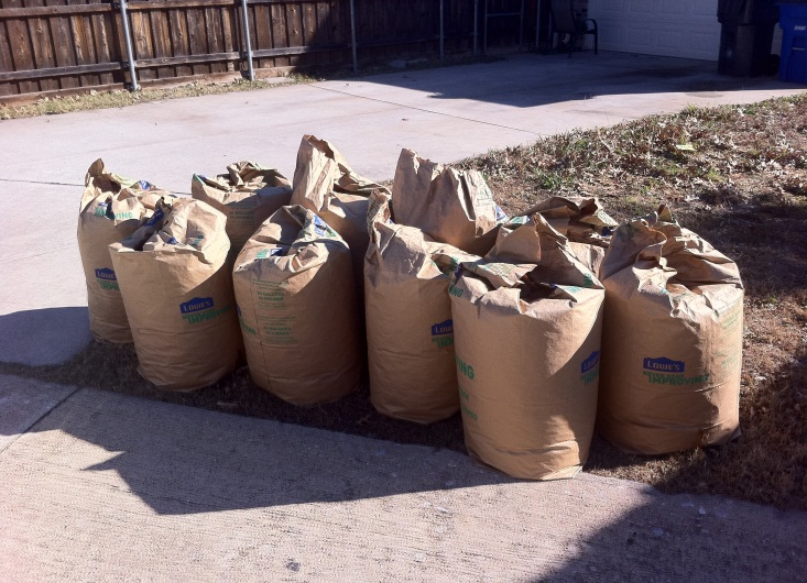 Proper Yard Waste Set Out.jpg